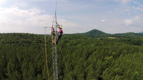 Two people working on a tower above a forest.