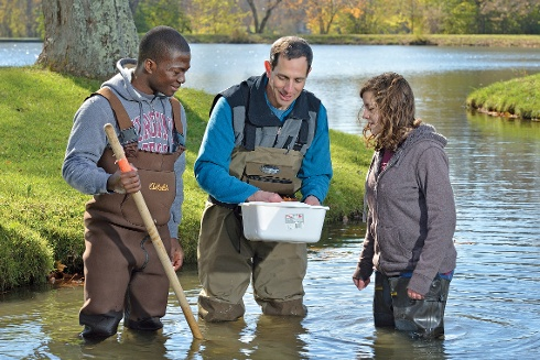 Researchers wading in a stream.